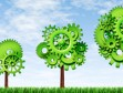 Green cog trees